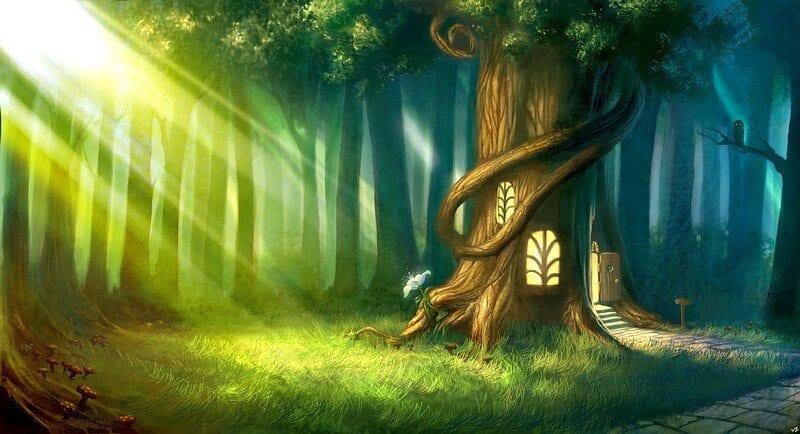 חדר בריחה היער הקסום 1