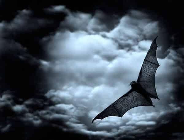 חדר בריחה מבצע עטלף 0