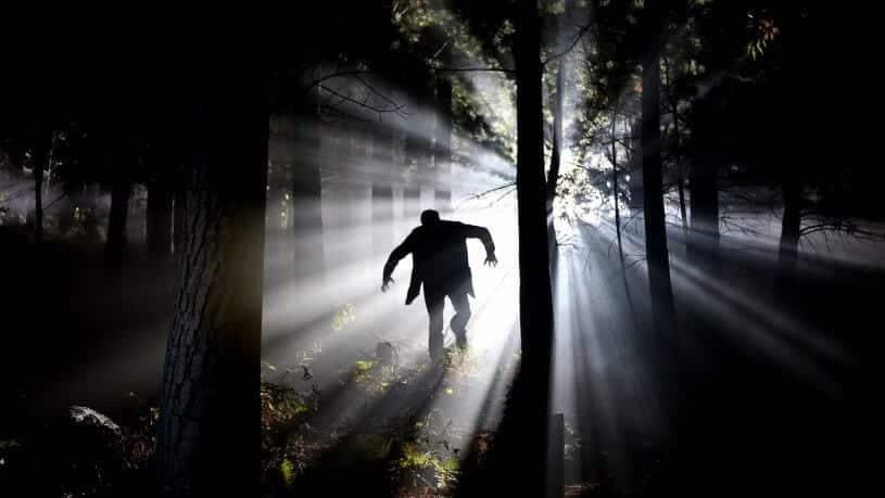 חדר בריחה היער הרדוף 0